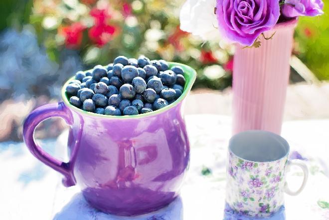Mrożenie jagód - jak zamrozić jagody na zimę?